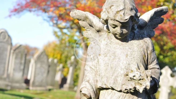 Grief Love and Grief